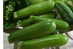 zucchini-group